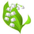 Na koji cvet podsecas?